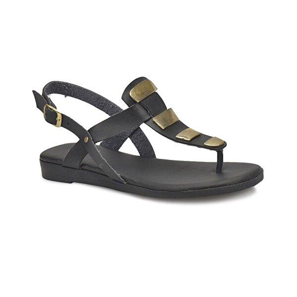Miss F DS18062 Siyah Kadın Klasik Ayakkabı
