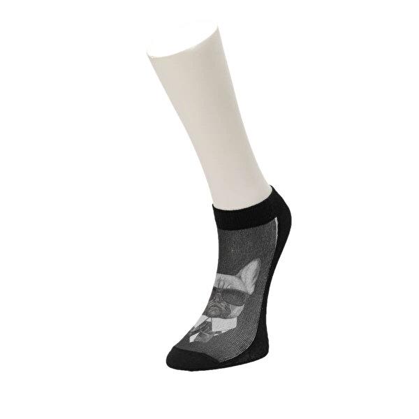 Fiyaka FYK 95 98Z Çok Renkli Erkek Çorap