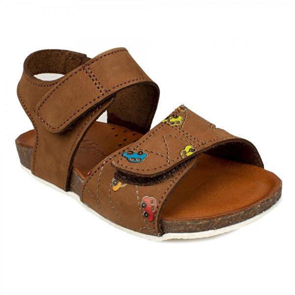 MSM Trend Sandals Piarmoni Msm Trend Sandals 2123 Cırtlı Taba Çocuk Sandalet