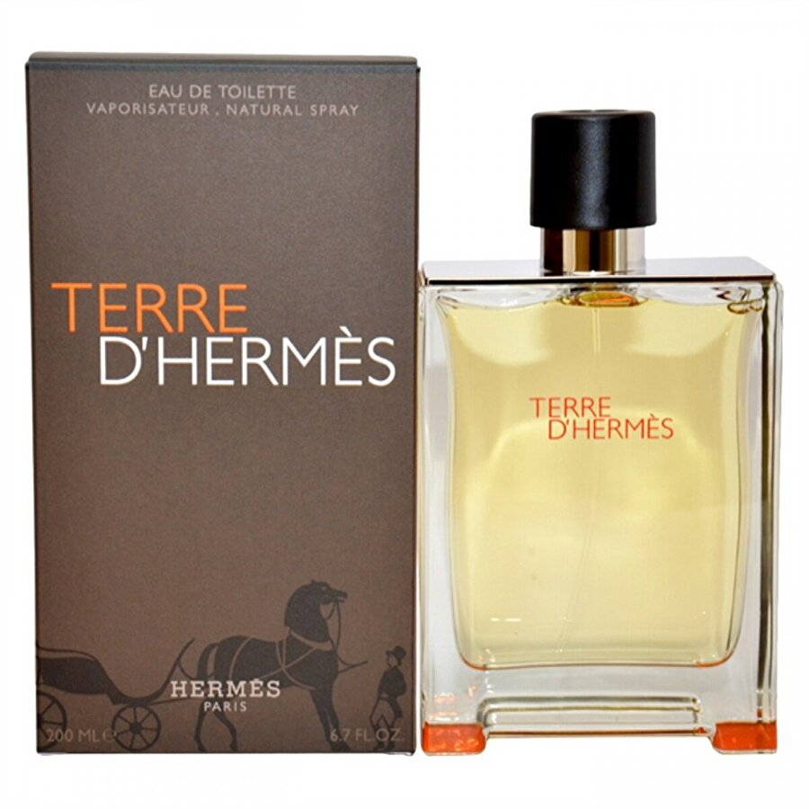 HERMES TERRE ERKEK EDT200ml