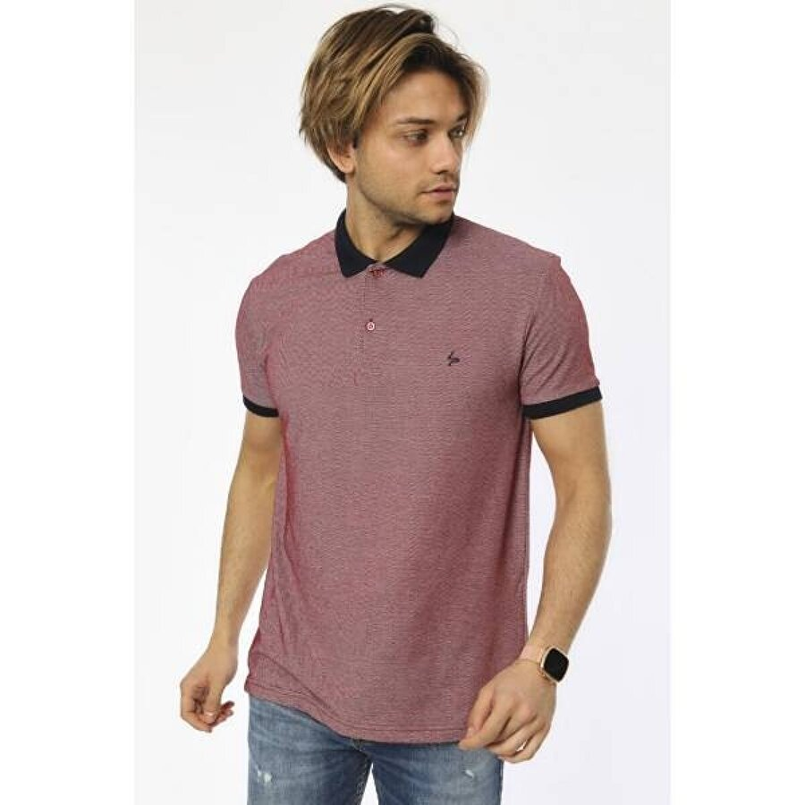 Louis Park Büyük Beden Basic Pike Polo T.Shirt